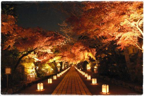 石山寺の紅葉混雑情報!見ごろは?ライトアップがデートにおすすめ!